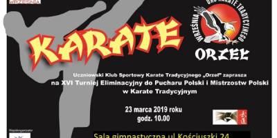 XVI Turniej Eliminacyjny do Pucharu Polski i Mistrzostw Polski