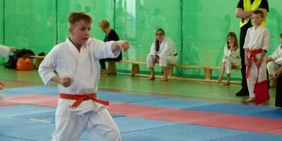IV Turniej Karate Tradycyjnego o Puchar Warsa i Sawy.