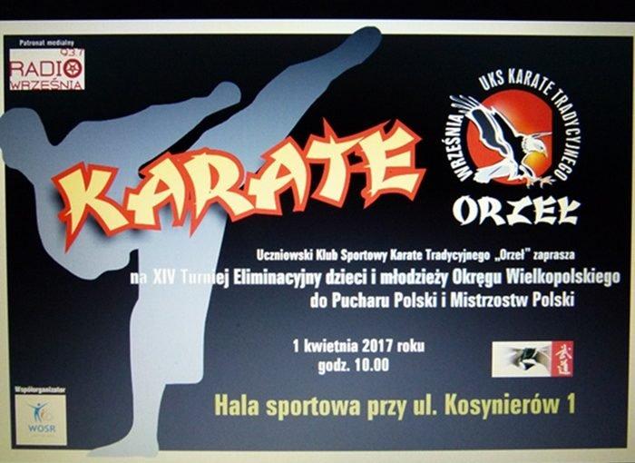 XIV Turniej Eliminacyjny do Pucharu Polski i Mistrzostw Polski